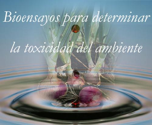 agua_tox copy